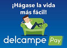 D-Pay_CP_ES
