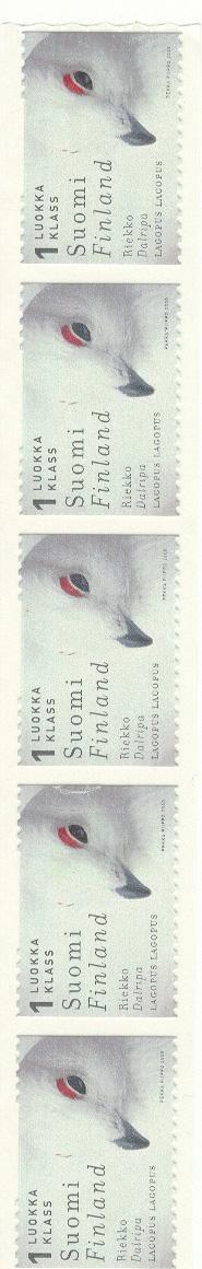 Finland 2000 :  Bird : Willow Grouse (**) X5 - Vogels