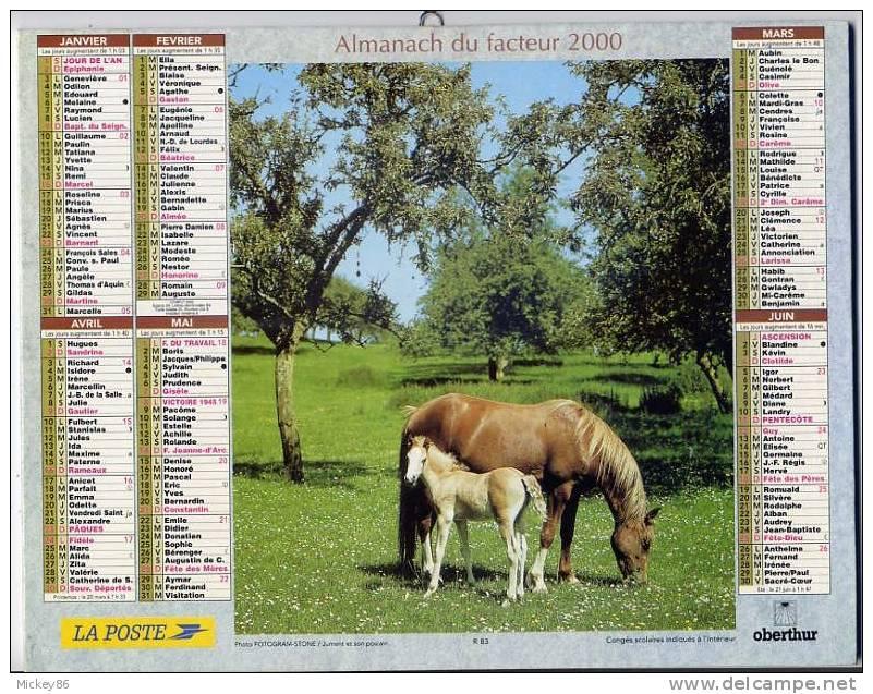 L´almanach Du Facteur-2000-dépt 86--CHEVAUX (poulain)et CHIEN DE CHASSE - Calendriers