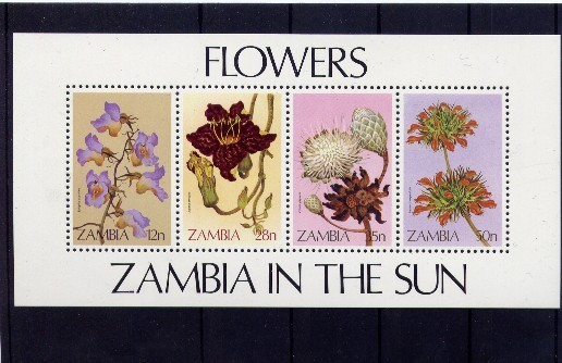 Fleurs Bloemen Zambia Yvertn° Bloc 12 *** MNH  Orchideeen - Zambie (1965-...)
