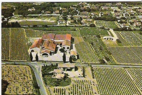 G 31 Cave De L'Association De Producteurs  Les Vignerons De Tavel - Frankreich