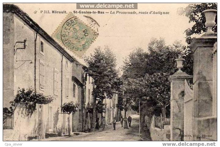 34 ST GENIES LE BAS (envs Murviel Béziers) Promenade, Route D´Autignac, Animée, Ed Pendaries 313,  1905 - France