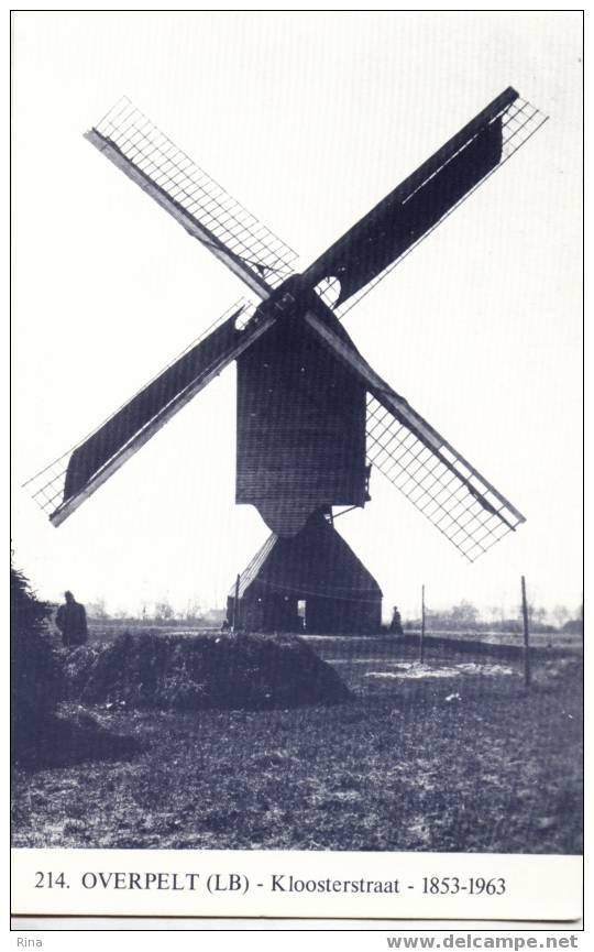 Molen Overpelt Kloostermolen Nr 214 - Overpelt