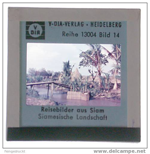 "Dia 011 - ""Reisebilder Aus Siam"" - 5 Glasdias - Glasdias"