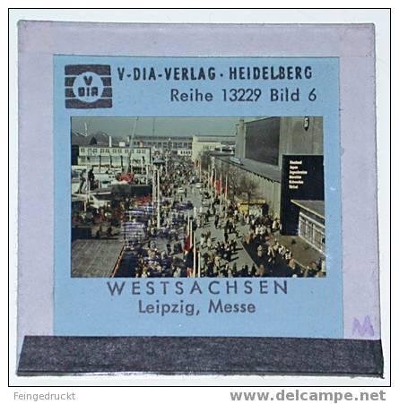 """Dia 021 - """"Westsachsen"""" (Deutschland. Das Mittelgebirgsland) - 7 Farbige Glasdias - Glasdias"""