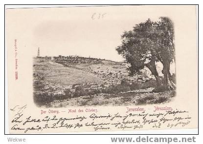 Pal006/ Palästina – Palestine – Jerusalem – Ölberg – Ca. 1897 (Mont DesOlivers) - Palästina
