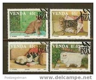 VENDA 1993 CTO Stamps 250-253 Cats # 6265 - Domestic Cats