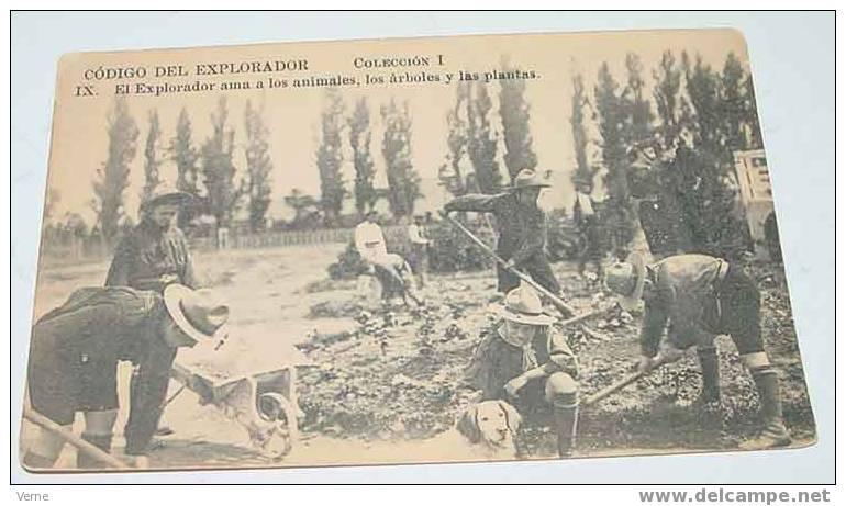 ANTIGUA POSTAL DE LOS BOY SCOUT - CODIGO DEL EXPLORADOR - ESCULTISMO - CARTE PHOTO SCOUT - ESTA FOTO PROCEDE DEL ARCHIVO - Movimiento Scout