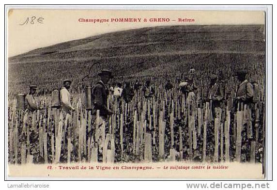 51 - CHAMPAGNE POMMERY & GRENO - TRAVAIL DE LA VIGNE EN CHAMPAGNE - LE SULPHATAGE CONTRE LE MILDEW - Reims