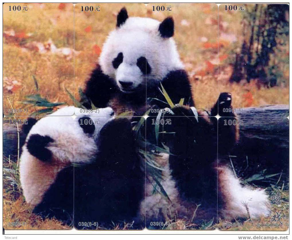 PANDA Bear Animal Tier (8) Puzzle Of 8 Phonecards - Jungle