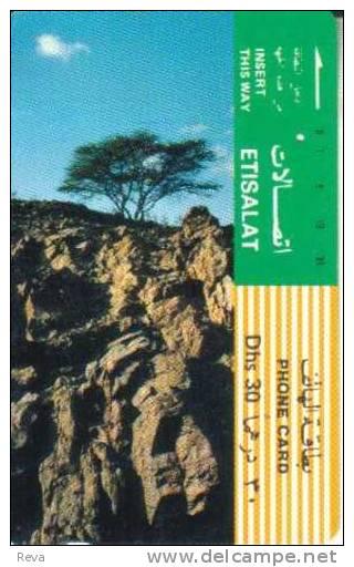 UNITED ARAB EMIRATES  30DH  TREE & ROCKS LANDSCAPE  TAMURA SPECIAL PRICE !! READ DESCRIPTION !! - United Arab Emirates