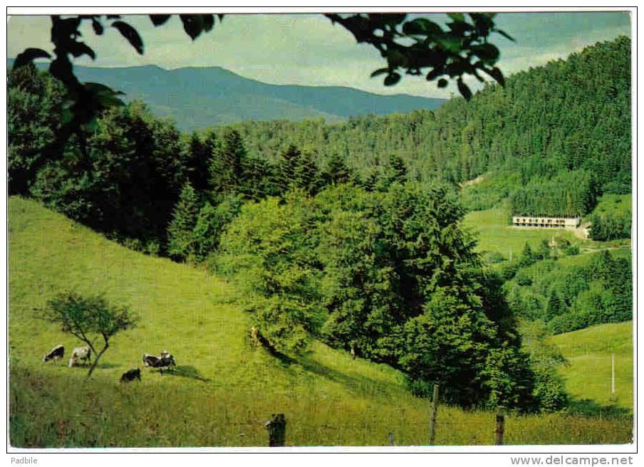 """Carte Postale 68. Luttenbach  """"Au Chêne Voltaire""""  Hotel-Restaurant  Trés Beau Plan - France"""