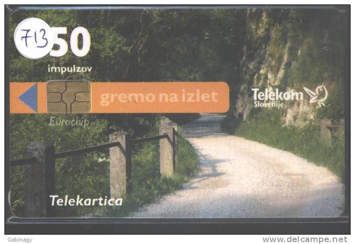 SLOVENIA - 720 - ROAD - Slovénie