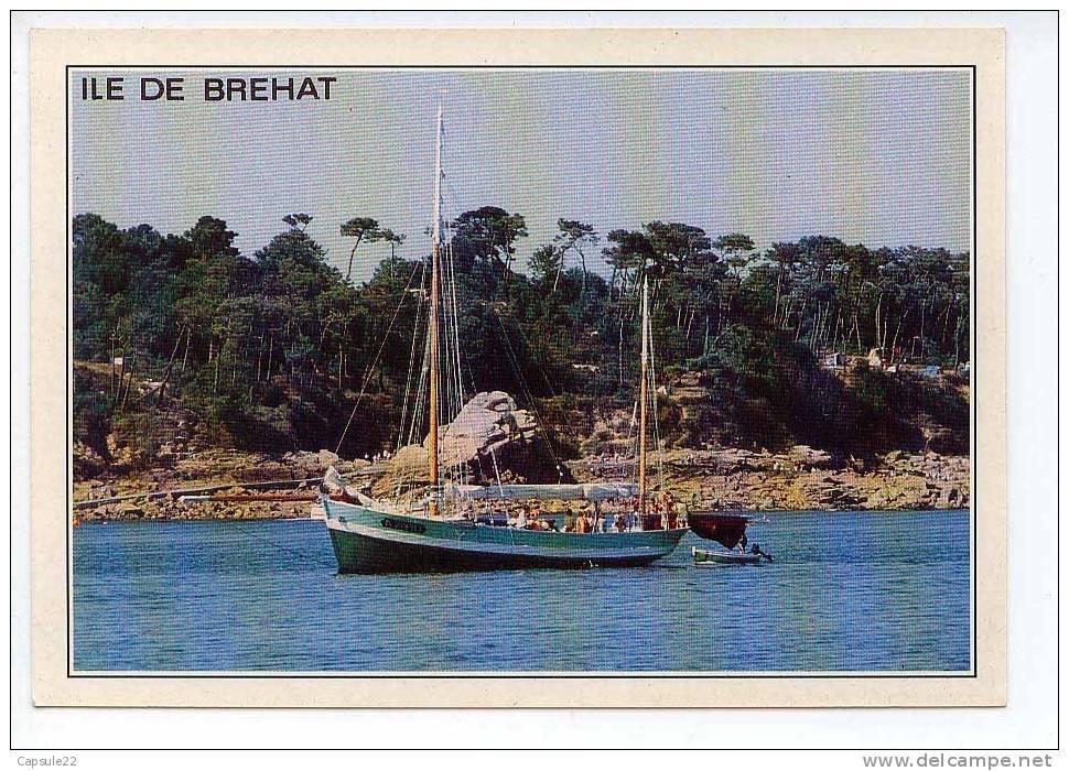Vieux Gréement (La Nébuleuse) Devant L'ile De Bréhat - Voiliers