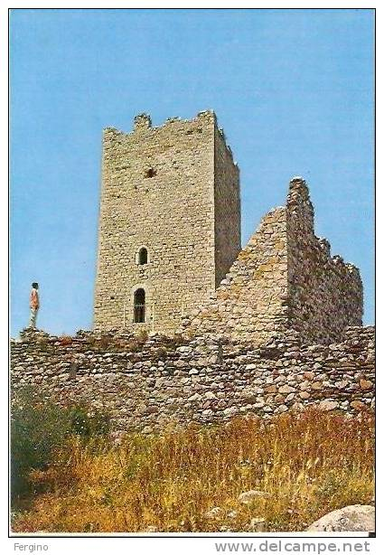 3231/FG/08 - POSADA (NUORO) - Castello Della Fava - Nuoro