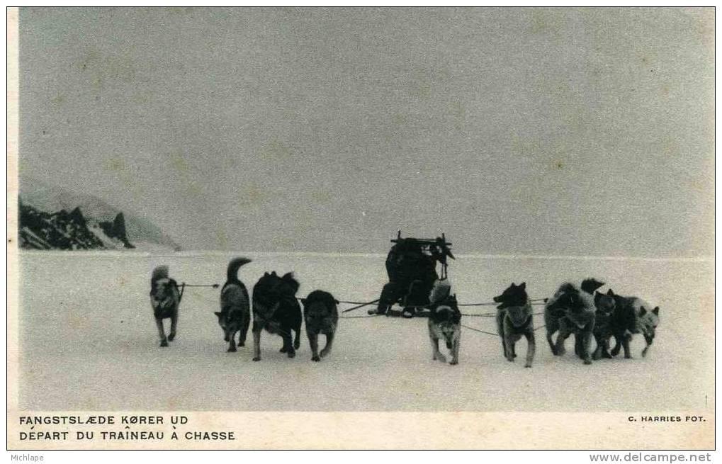 ATTELAGE DE CHIENS DEPART POUR LA CHASSE - Newfoundland And Labrador