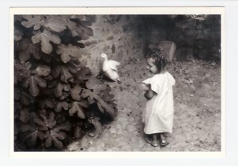 Ganci 1981: Petite Fille Avec Canard, Figuier, Photographe: Ferdinando Scianna (08-1203) - Kirghizistan