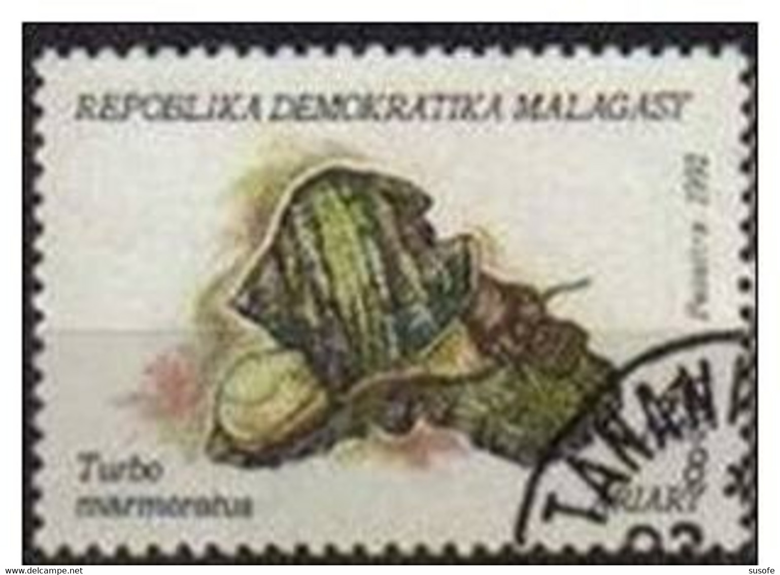Madagascar 1992 Scott 1122 Sello * Moluscos Turbo Marmoratus 8A Michel 1416 Malagasy Madagascar Stamps Timbre Briefmarke - Madagascar (1960-...)