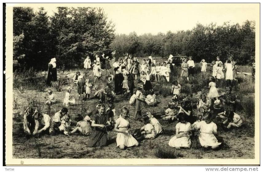 Ravels -O.L. Vrouw Van De Kempen-Open-lucht-school Van Zwakke Meisjes-Kleuterlust In De Zavekullen Ophet 6 Hectaren Park - Ravels