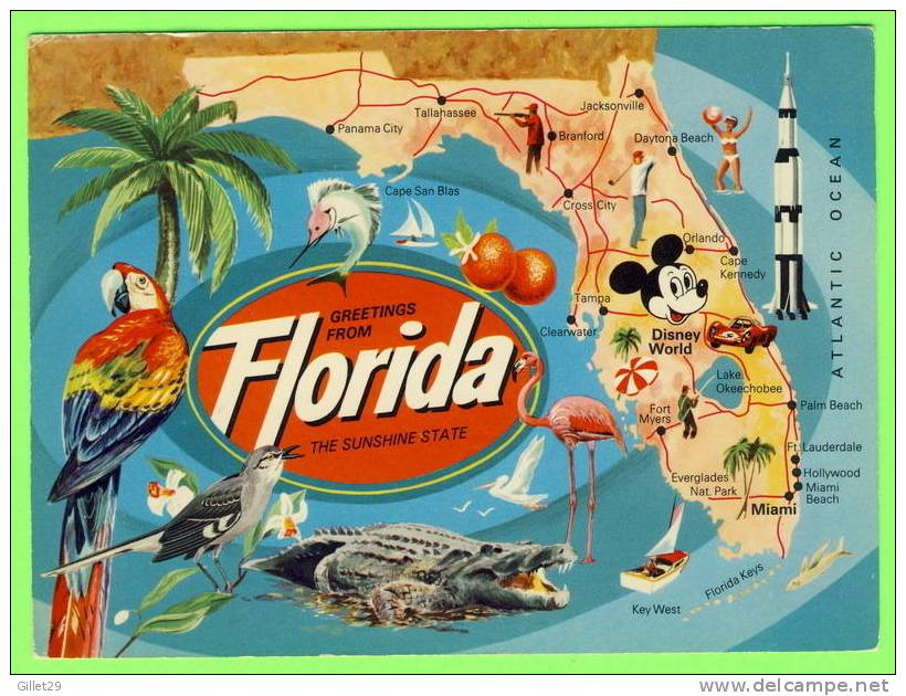 MAP - FLORIDA - THE SUNSHINE STATE - GREETING FROM - - Cartes Géographiques