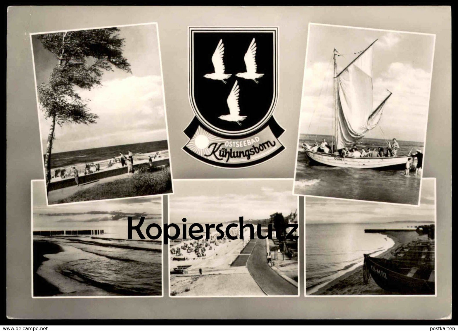 ÄLTERE POSTKARTE KÜHLUNGSBORN Wappen Blason Möwe Segelschiff sailing boat Diana bateau à voiles gull mouette postcard AK