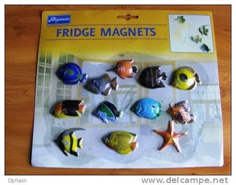 Série De 12 Magnets Poisson - Neufs, Sous Blister - Ref A7631 - Magnets