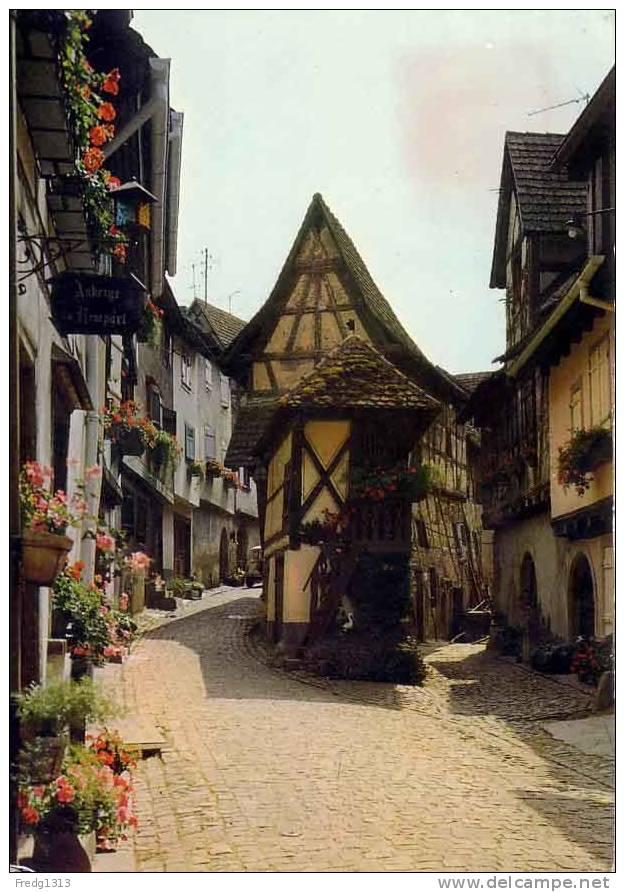 Eguisheim - Vieille Rue - Frankreich