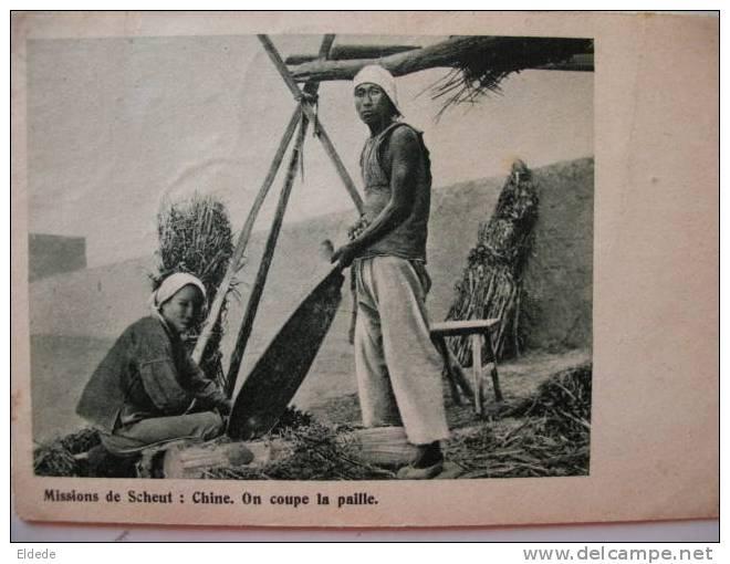Mission De Scheut  China Cutting Corn - Chine