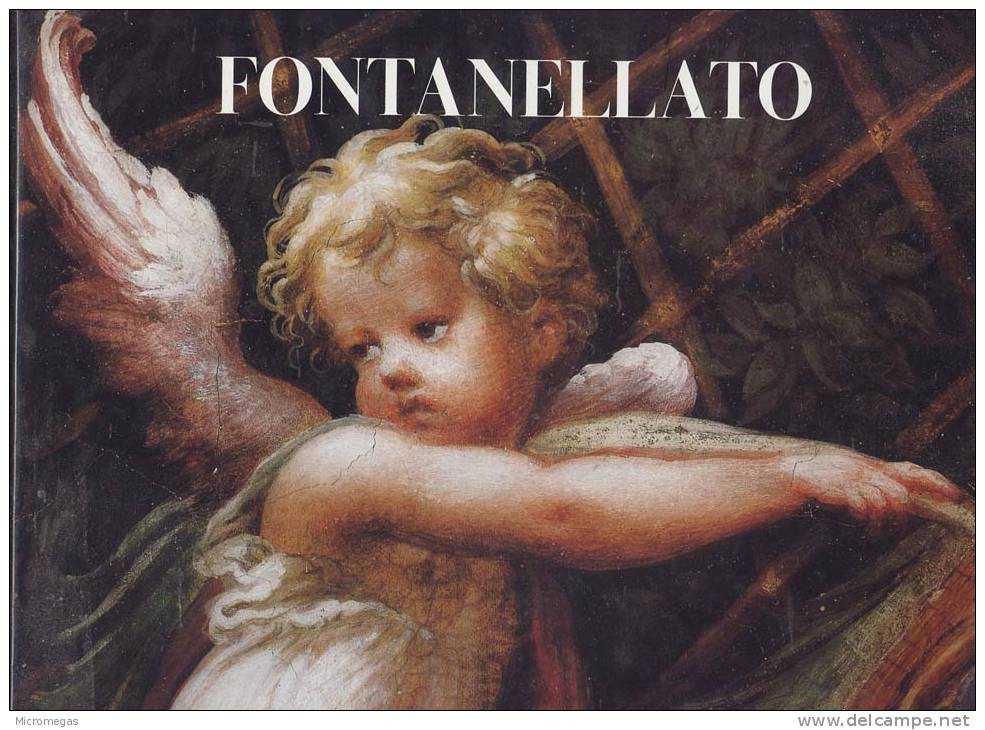 Fontanellato. Franco Maria Ricci - Livres, BD, Revues