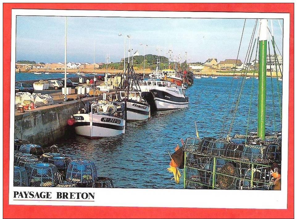Port De Roscoff  Flotille De Pêche Et Casiers à Crustacés   Edt  Yvon - Roscoff