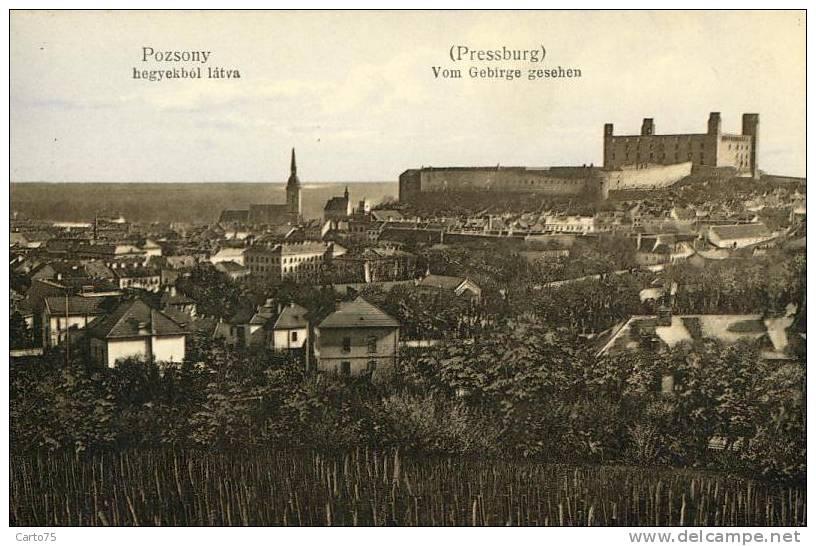 SLOVAQUIE - Pozsony - Pressburg - Bratislava - Panorama - Slovaquie