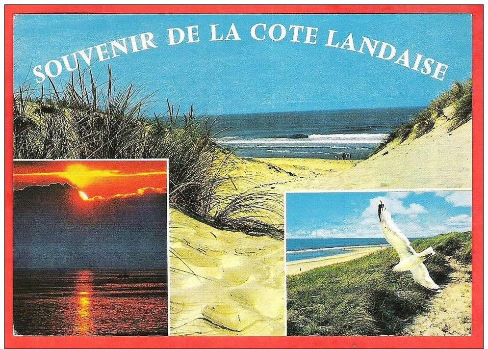 Souvenir De La Cote Landaise 3   Vues  EDT / N°   Chatagneau   3934 - Ohne Zuordnung