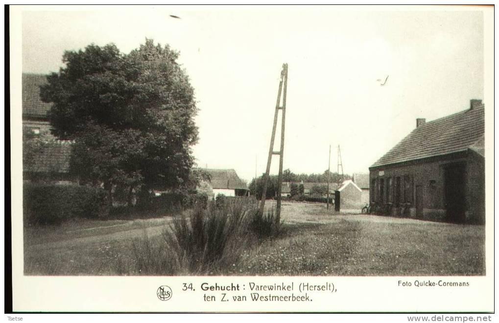 Varewinkel ..... ( De Belgische Landschapen: De Kempen ) - Herselt