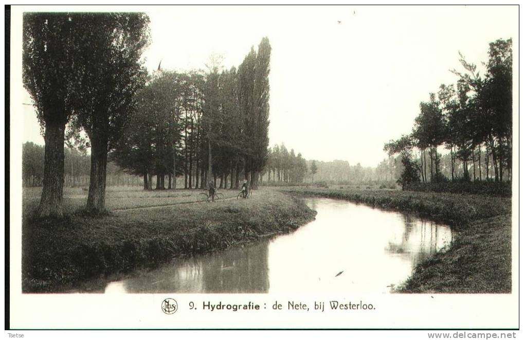 Westerloo - De Nete ( De Belgische Landschapen: De Kempen ) - Westerlo