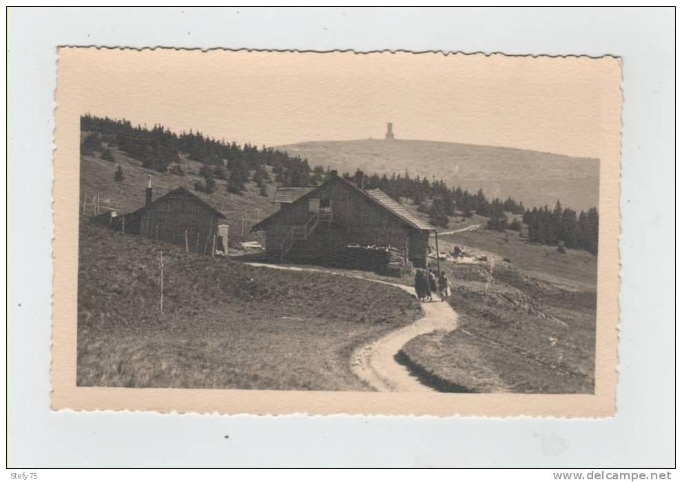 Schweizerei,1304m-Aus Altvaters Bergen - Schlesien