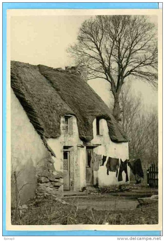 B - 44 - SAINT JOACHIM - édition Cholet N° 459 - Grande  Briére - Chaumiére - Saint-Joachim