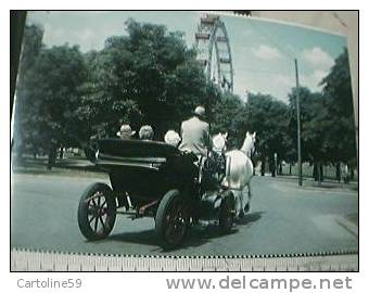 WIEN VIENNA CARROZZA CAVALLI VB1974 BR19161 - Taxi & Carrozzelle