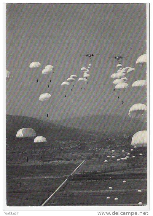 D413- CARTOLINA AEREI E PARACADUTISTI - PISA? - Paracadutismo