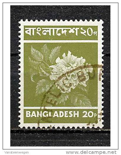 Bengladesh Y&T 31 ° - Bangladesh