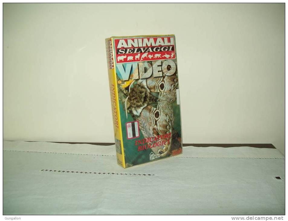 "Animali Selvaggi(Hobby % Work)   ""La Bramea Di Harting"" - Documentaires"