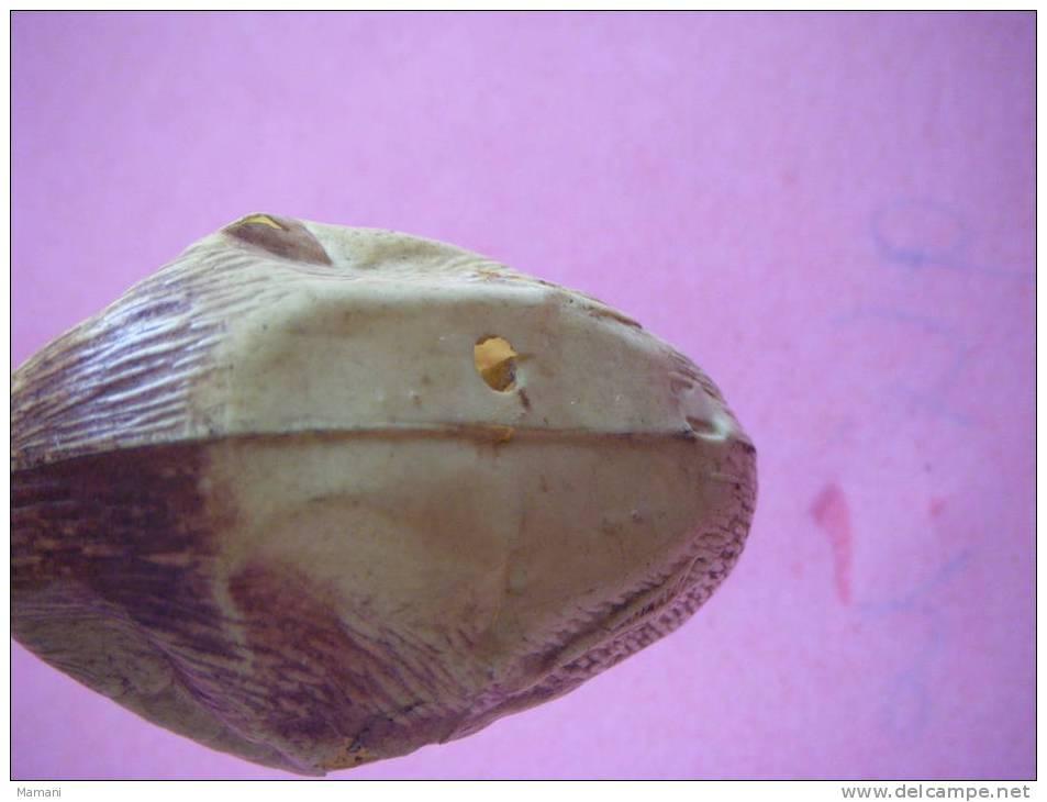 Canard En Celluloid 4x 6 Cm Environ-- - Aquaristik