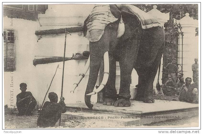 CPA CAMBODGE - PNOM-PENH - ELEPHANT CAPARACONNE - Elephants