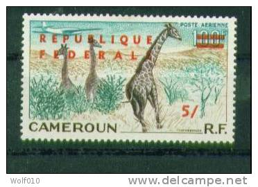 Cameroun. Giraffes. 1961. Surcharged Air Mail Stamp. MH. SCV = 32.50 - Timbres