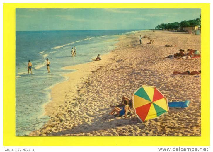 ...... CARTE POSTALE POSTCARD AFRICA MOZAMBIQUE MOÇAMBIQUE BEACH 1960 YEARS AFRIKA AFRIQUE - Mozambique