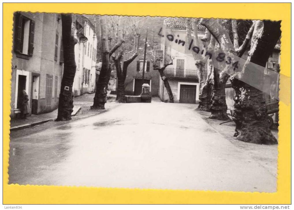 - LA ROQUEBRUSSANNE -  ( Var ) - Le Centre Du Village, Non écrite, Neuve, LAPIE, Photo Véritable, Splendide, Voir Scan. - La Roquebrussanne