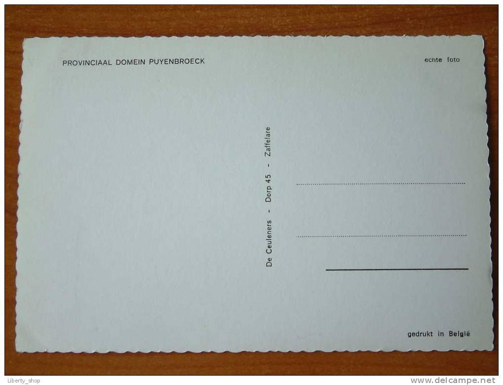 PROVINCIAAL DOMEIN PUYENBROECK / Anno 19?? ( Zie Foto Details ) !! - Wachtebeke