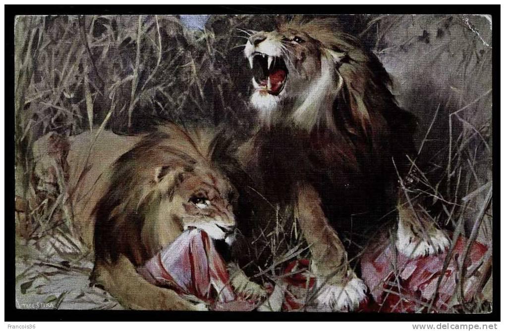 Lot De Deux Cartes De Lions - Peintures De Tadé Styka - Repas Dans Le Désert - Leones -  Lioni - Cartes Vierges - Lions