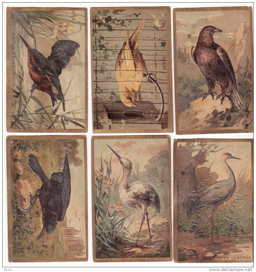 Lot 6 Chromos Sans Pub    Oiseaux : Aigle, Martin-pêcheur, Héron, Grue, Corbeau, Serin - Zonder Classificatie