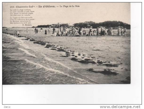 17.719/ Ile D´Oleron - La Plage De LA BREE - Braun N°1419 - Ile D'Oléron