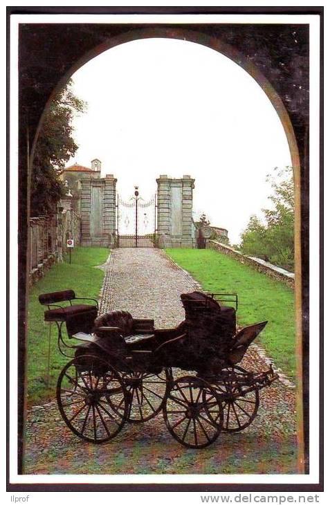 """Carrozza """"Vis A Vis"""" Per Traino Cavallo Anno 1850, Caravino, Torino - Taxi & Carrozzelle"""